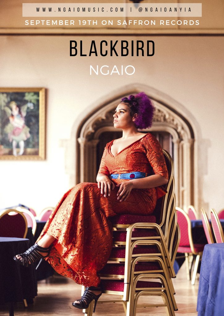 Blackbird's being released tomorrow on Saffron Records and I woke up this morning thinking about the journey behind this track. What has happened over the years to bring this song together. It's been years...
